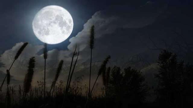 Amalan Zikir Tengah Malam Agar Dipenuhi Kebutuhan Duniawi dan Akhirat
